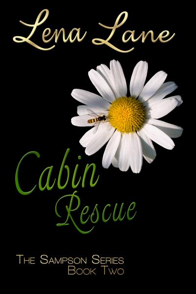 cabin-rescue-cover