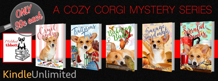 COZY MYSTERY 5 BOOKS