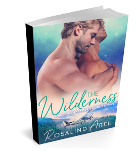 THE WILDERNESS PAPERBACK 2