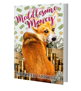 meddlesome money hardback